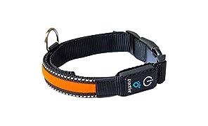 Tractive LED Dog Collar, Medium, Orange