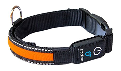 Tractive Collier avec LED pour Chien Orange Taille M