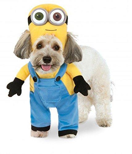 Rubies Costume Company Minion Bob Arme Pet ()