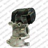 Delphi EG10396-12B1 Válvula AGR