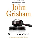 Witness to a Trial: A Short Story Prequel to The Whistler (English Edition)