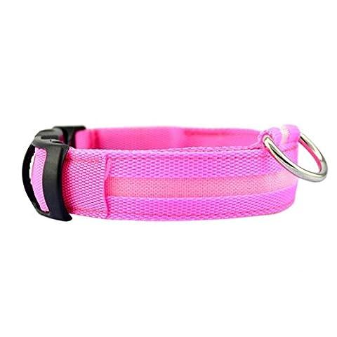 collier chien Angelof Collier PET de sécurité pour collier lumineux en nylon à LED solide (S, Rose)