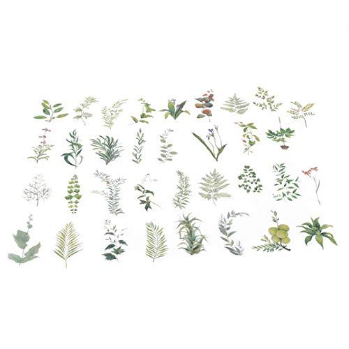 Weryffe Kreative Designs Pflanzen Thema Nette Blume Tagebuch Aufkleber Dekorative Aufkleber Für Telefon Notebook Scrapbooking Journal Aufkleber 34 Stücke (Grün)