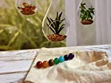 LOVEKUSH Beautiful AAA++ Quality Chakra Beads, 7 pc Set, 8mm Round Chakra Stones, Healing Crystals, Rainbow Beads, Yoga Jewelry, Meditation Beads, Natural Gemstone Beads 8mm