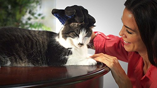 Allstar Innovations True Touch Five Finger Deshedding Glove- Premium Version, Great for Cats & Dogs- Includes 1 Authentic True Touch Glove 1 Lint Roller- As Seen on TV 7