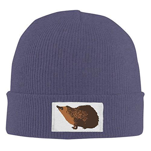 Reghhi Unisex elastische Strickmütze Cap Igel Zeichnung Winter im Freien warme Schädel Hüte