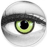 Lenti a contatto colorate annuali lenti a contatto Meralens 1 Lunatico verde Crazy Fun Green Lunatic. Top quality to carnival carnival Halloween con lenti a contatto contenitore senza forza
