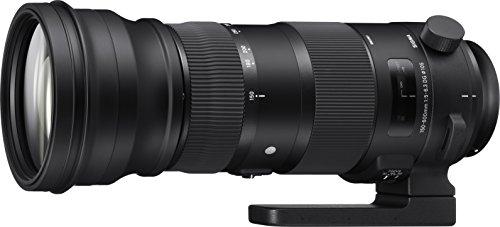 Sigma 150-600mm F5,0-6,3 DG OS HSM Sports Objektiv (105mm Filtergewinde) für Nikon Objektivbajonett