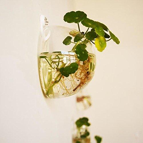 Cupcinu Jarrón de Cristal Transparente con Flores
