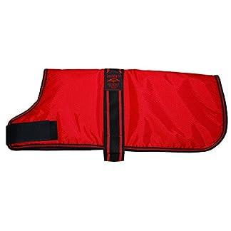 Animate Padded Dog Coat, 20-inch, Red 18