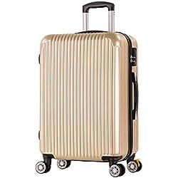 Valise de Cabine LLdy 20 Pouces, Bagage à Main en ABS léger, 4 valises à 4 Roues pivotantes (Argent, Noir), 26, Miroir de Champagne