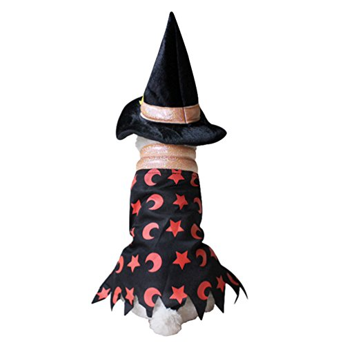 Yuncai Lustige Halloween Haustier Hund Kleidung Weihnachts-Clown Kürbis Spinne Hexe Verkleiden Sich Party Kostüm Cosplay für Katze Als Bild XL