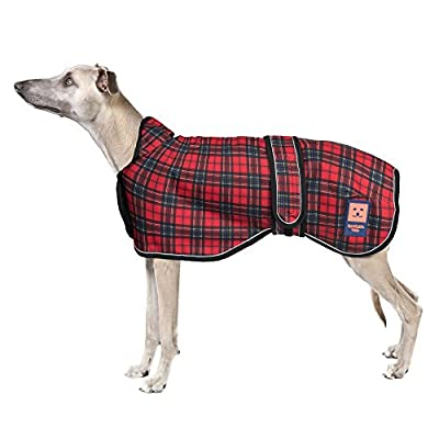 Ginger Ted Shower Waterproof Greyhound / Lurcher / Whippet Dog Coat