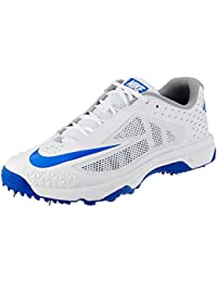 big sale d0906 0f9f0 Nike Mens Domain Cricket Shoes
