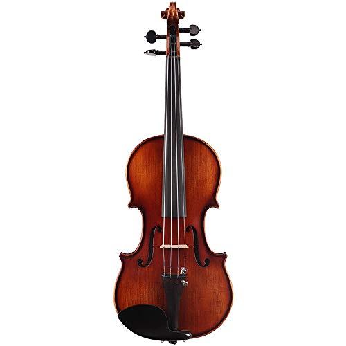 Miiliedy Fresh Natural Handmade meraviglioso Violino Principiante Adulto Child Student Practice Performance Fiddle con Violino Box Bow Rosin Extra Strings Chin Rest (Dimensione : 1/2)