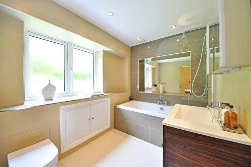 BIOHY WC-Reiniger (12 X 1 litre) Nettoyant concentré pour toilettes, gel nettoyant visqueux, gel nettoyant, hygiène et parfum frais, nettoyant organique professionnel, agent nettoyant