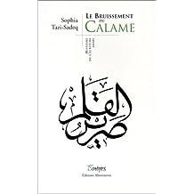 Le Bruissement du Calame : Histoire de l'écriture arabe