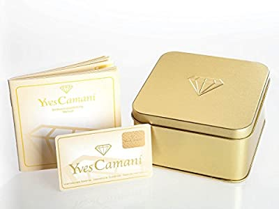 Yves Camani Quentin - Reloj para hombre, color plateado / marrón de Yves Camani