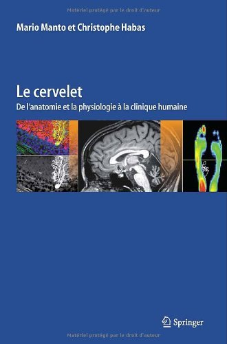 Le cervelet: De l'anatomie et la physiologie ???? la clinique humaine by Mario Manto (2013-10-16) par Mario Manto;Christophe Habas
