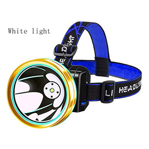 Llq2019 fari sensore luci a led per esterni luci da pesca notturne impermeabile night fishing night luci sportive super bright 9000w (color : white light, size : 8 * 8 * 8cm)