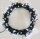 Luci stringa 300 LED luminoso bianco stringa di luce 8 funzioni/30 metri-funzionamento Power LED stringa di luci-ideale per decorazioni natalizie LED String luci (100 LED-30m)-cavo verde