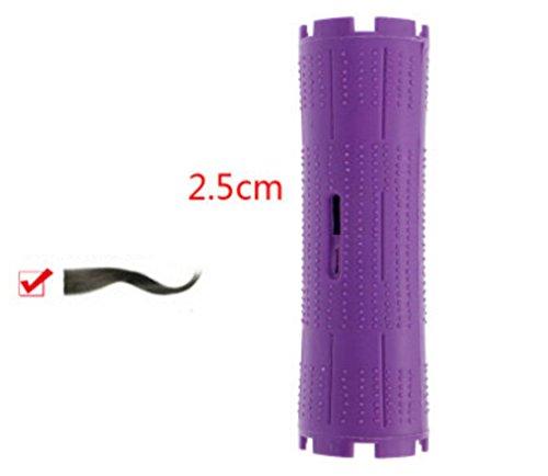 XYLUCKY Haar Hair Curler Haar Kunststoff kalte Dauerwelle dicken Stock Stickpack 10 Werkzeuge , 1 (10 / bag) (Roll-klettverschluss Zoll 1 2)