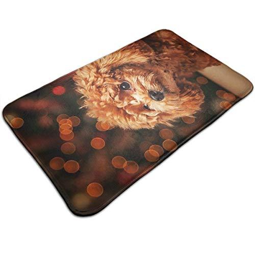 artyly Netter Welpen-Pudel Deco-mat Fußmatte, Fussmatte Innen, rutschfest, Waschbar - Schmutzfangmatte - Fussabtreter - Türmatte 50 x 80 cm
