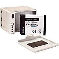 GoPro - 120-000005-0B - Batterie BacPac additionnelle amovible pour GoPro HD