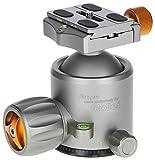 Rollei Lion Rock Stativkopf 25 - Robuster 360° Panorama Kugelkopf aus Aluminium mit Einer Belastbarkeit von bis zu 25 kg, Arca Swiss kompatibel, inkl. Schnellwechselplatte