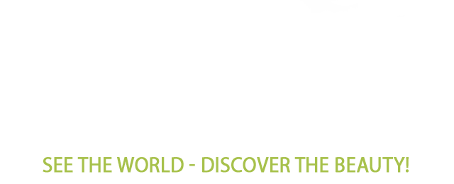 41Z3JMqLlvL - 4K Nature Relax TV