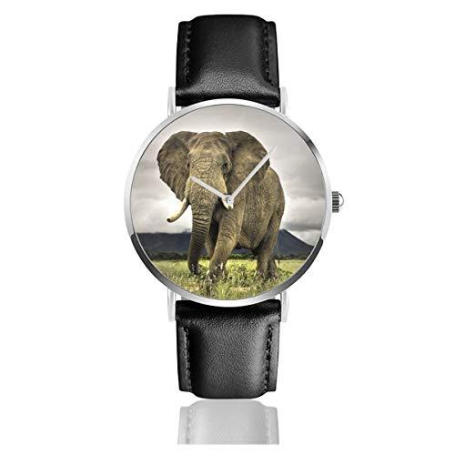 Quarzuhr mit Elefanten-Motiv, isoliert, mit großen Ohren, Edelstahl, Lederarmband