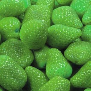 100pcs / sac 24 sortes de fraises Collection graines de fraises de fruits géant bonsaï pot non-OGM bio pour plantes de jardin à la maison 9