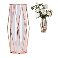 Wrought Iron Holder Vase, Womdee Vases for Flowers Glass Test Tube Vase Flower Pots for Hydroponic Plants Home Garden Decoration Test Tube Hydroponic Container Home Glass Bottle