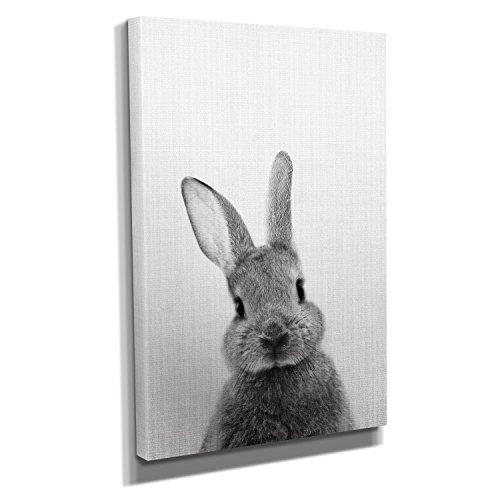 Nerdinger Bunny Portrait - Kunstdruck auf Leinwand (30x45 cm) zum Verschönern Ihrer Wohnung. Verschiedene Formate auf Echtholzrahmen. Höchste Qualität.