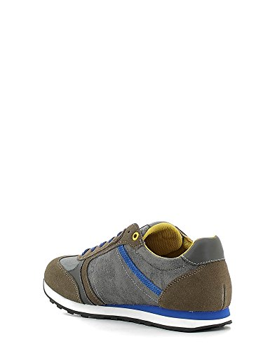 Gaudi , Chaussures de Running Compétition homme Gris