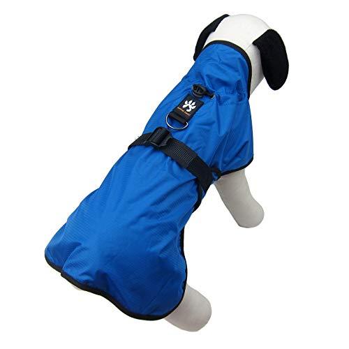 Kostüm Schal Rock Pudel - Alfie Pet Easton Regenmantel für Hunde und Katzen, Größe L, Blau