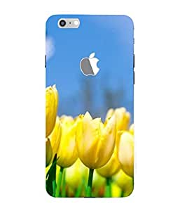 ifasho Designer Back Case Cover for Apple iPhone 7 (Logo View Window Case) ( Dating Couples Pandora Jewlery Dhanbad Music Downloads Tenali)