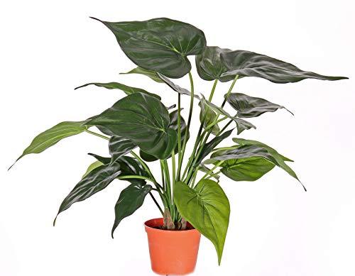artplants Set 'Künstliche Alocasia + Gratis UV Schutz Spray' – Künstliche Elefantenohrpflanze AROA, grün, 50cm