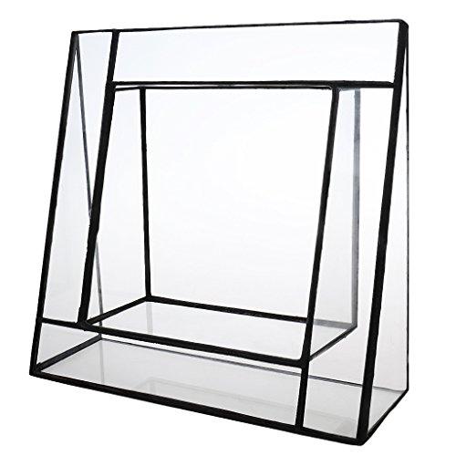 gazechimp-dreiecksform-glas-saftig-gefass-gewinkelt-terrarium-aufma-gartenhaus-gewaechshaus-pflanzbe