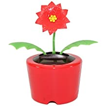5e6b434ca94ed7 Holiday Gift ~ Dancing Poinsettia Flower Solar Toy US Seller Great  Christmas Gift Car Dashboard Office