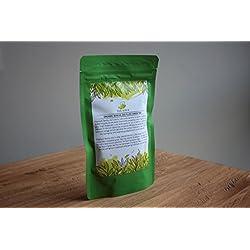 TEA SOUL Organisches Sencha aus Kagoshima - Bio grüner Tee aus Japan, 1er Pack (1 x 250 g)