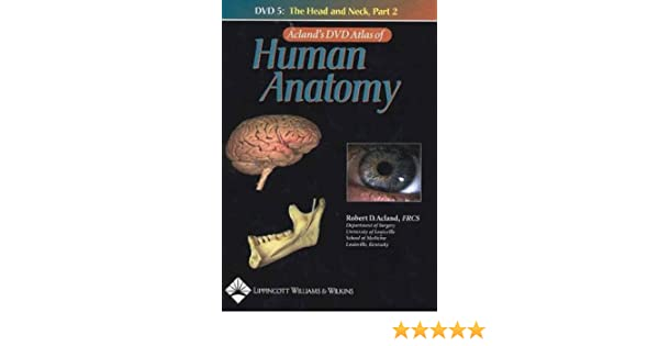 Acland\' Dvd Atlas Of Human Anatomy: The Head And Neck, Part 2, Disc ...