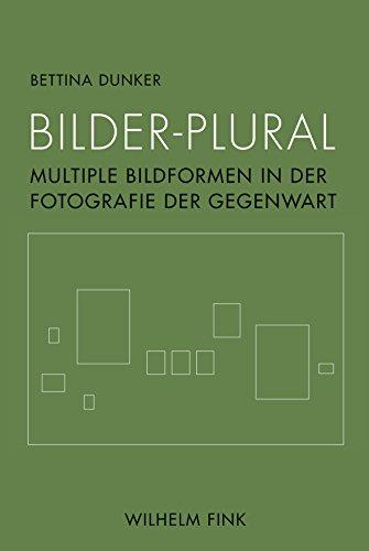 Bilder-Plural: Multiple Bildformen in der Fotografie der Gegenwart