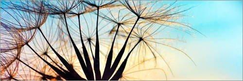 Holzbild cm: Pusteblume
