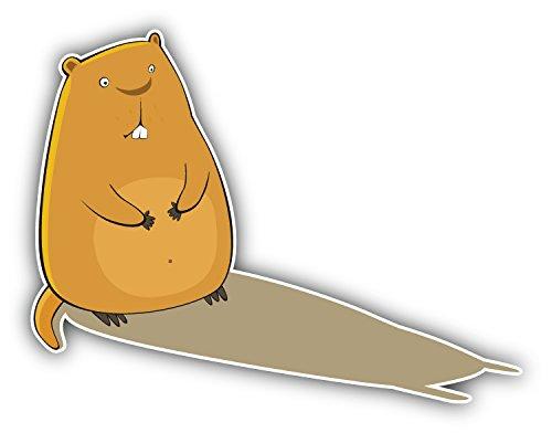 marmot-shadow-car-bumper-sticker-decal-12-x-10-cm