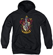 Harry Potter Pull Over Hoodie Sweatshirt and Stickers, Youth Sizes