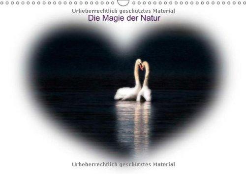 Die Magie der Natur (Wandkalender 2014 DIN A3 quer): In diesem Kalender finden Sie Naturbilder aus...