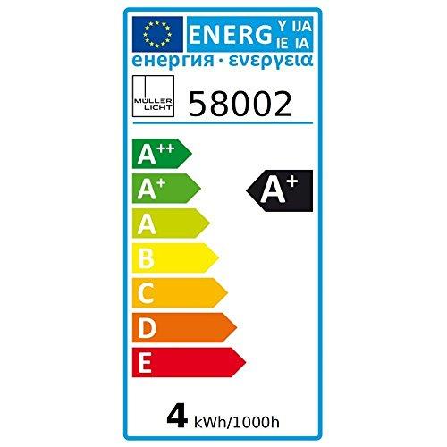 2er Set MÜLLER-LICHT LED MiniGlobe 3 Watt (25 Watt Ersatz) / E14 / 250 Lumen / 180° / 2700 Kelvin / Energieeffizienzklasse A++ / 58002 - 3
