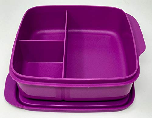 Tupperware to Go Lunchbox 550 ml lila Fuchsia Beere mit Trennwand Clevere Pause Schule
