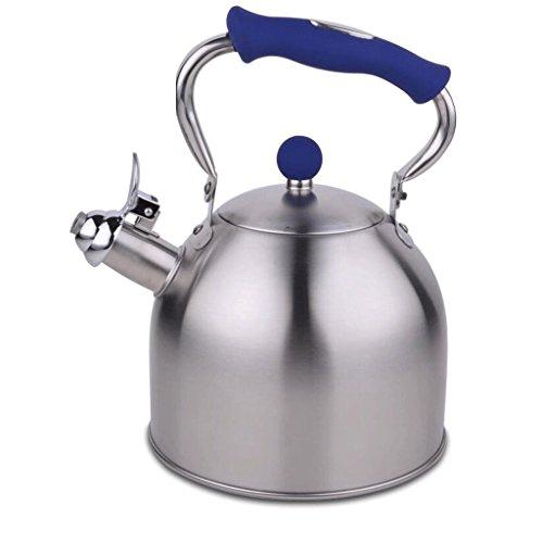 Bouilloire GAODUZI Gaz 304 Acier Inoxydable Whistle gaz Cuisinière Universal Kettle 3L (Couleur : Bleu)